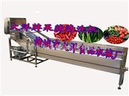 CQX-400-水果蔬菜消毒清洗机,蔬菜清洗机