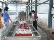 YH-25HM辣椒粉及調味品微波干燥殺菌機