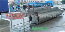 DY-1000宁夏枸杞子清洗机