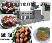 TSE65-4济南盛润机械大豆拉丝组织蛋白设备厂家