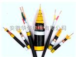 铠装控制电缆KVVP2-22-24*1.0