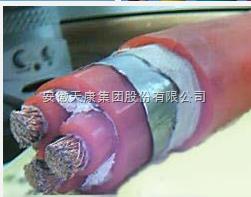 供应YGC22-3*16+1*10钢带铠装硅橡胶电缆