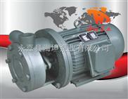 直连式单级旋涡泵1W系列