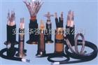 WDZ-JVVP 10*0.75 低烟无卤环保电缆