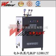 LDR-一体智能式电锅炉灭菌消毒必选