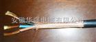电缆 KFFRP-450/750V-3*6高温电缆