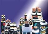 电力电缆YJLV22 4*95+1*50
