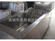 超声波蔬菜清洗机|诸城市昊昌食品机械zui专业