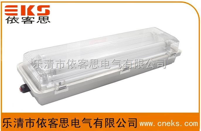 带应急防水防尘防腐荧光灯FAY-2*40J双管
