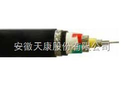 供应天康0.6/1kV船用电力电缆选型