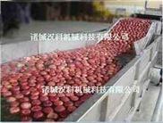 QX-8000-清洗机 大姜清洗机 萝卜清洗机 多功能气泡清洗机