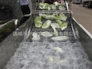 QX6-1蔬菜氣泡清洗機