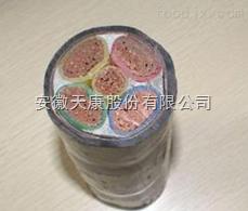 ZR-YJV22/4*185+1*95电力电缆
