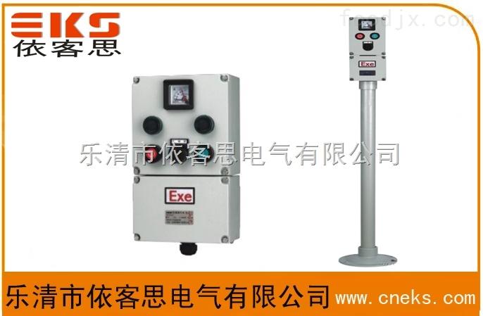 依客思专业订制BXK61-A1D1K1B1L立式防爆防雨控制箱