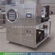食品小型冻干机 冷冻干燥设备