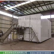GLZ-果蔬流态化单体速冻机速冻冷藏设备