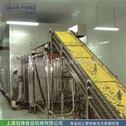 GLZ-青豆甜玉米果蔬流态化速冻冷藏设备