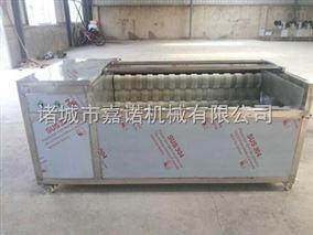 JN-1800毛刷清洗机