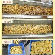花生毛辊去皮清洗设备便宜  小型滚筒红薯清洗去皮机 地瓜去皮机 切片烘干加工设备