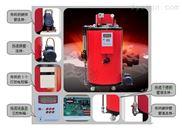 50kg燃油蒸汽鍋爐/發生器全自動液晶顯示廠家直銷免辦鍋爐使用證