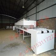 隧道式红豆微波干燥机 豆制品袋装微波干燥灭菌设备 五谷微波烘