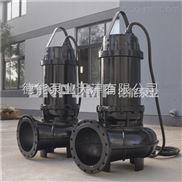 DN_大型藥廠廢水處理強排泵生產廠家