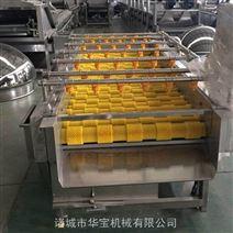 大型蔬菜清洗机厂家