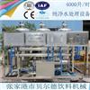 WTS-4饮用水处理设备全自动反渗透水处理设备