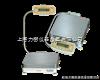YP10k-1大称量电子天平,上海电子天平价格